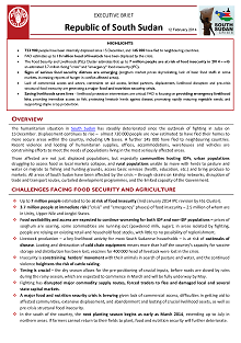 South Sudan - Executive brief 12 February 2014
