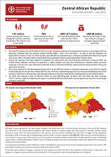 Central African Republic - Situation report July 2019