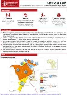 Lake Chad Basin (Cameroon, Chad, the Niger, Nigeria) - Situation report June 2016