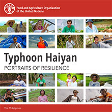 Typhoon Haiyan - Portraits of resilience