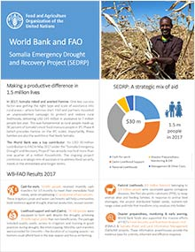 Somalia Emergency Drought and Recovery Project (SEDRP)