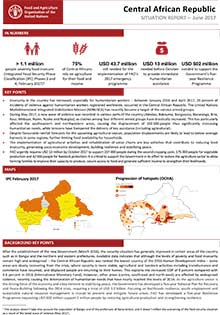 Central African Republic - Situation report June 2017