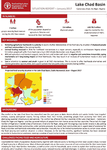 Lake Chad Basin - Situation report January 2017