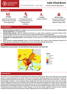 Lake Chad Basin - Situation report April 2017