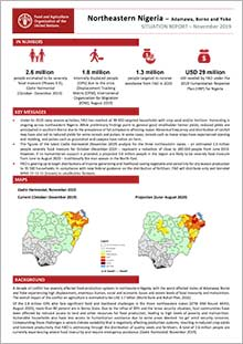 Northeastern Nigeria - Situation report November 2019