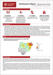 Northeastern Nigeria - Situation report February 2020