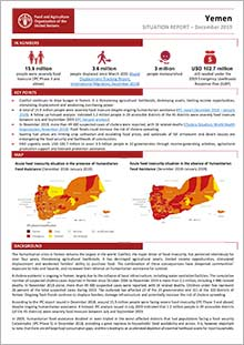 Yemen - Situation report December 2019