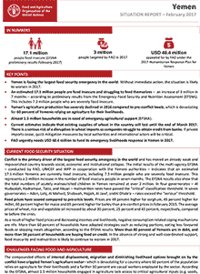 Yemen - Situation report February 2017