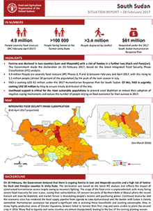 South Sudan - Situation report 28 February 2017