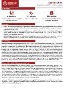 South Sudan - Situation report 31 January 2017