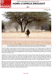 FAO's preparedness for and response to the drought in the Horn of Africa 2011