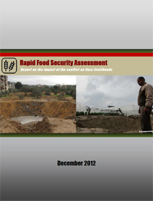 Rapid Food Security Assessment