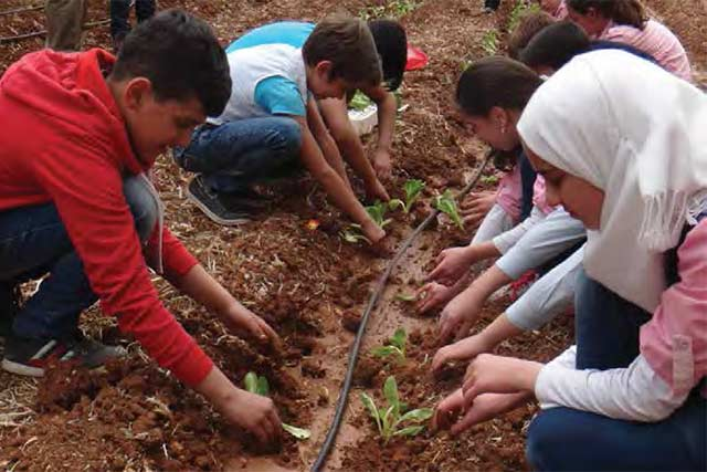 Improving nutrition among Syrian children through education