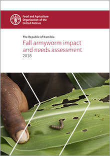 The Republic of Namibia - Fall armyworm impact and needs assessment - 2018