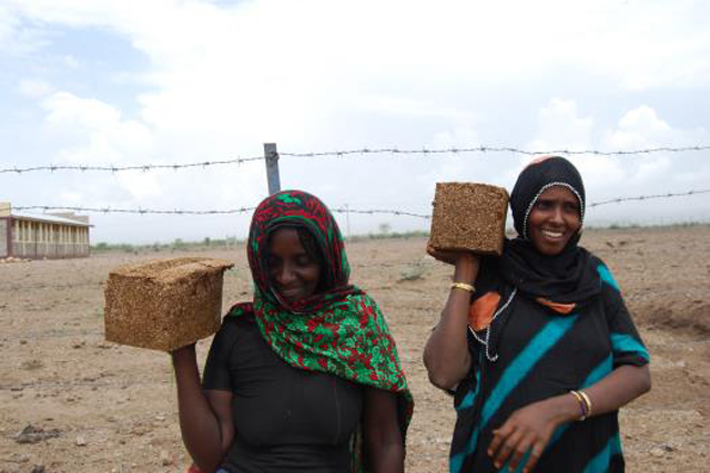 Emergency livelihood support to drought-affected farming communities in Afar and Somali Regions in Ethiopia