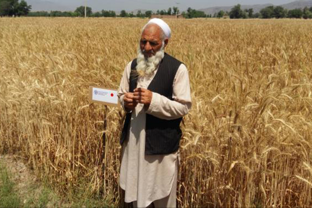 Emergency assistance for the recovery and development of the agricultural economy in the Federal Administered Tribal Areas