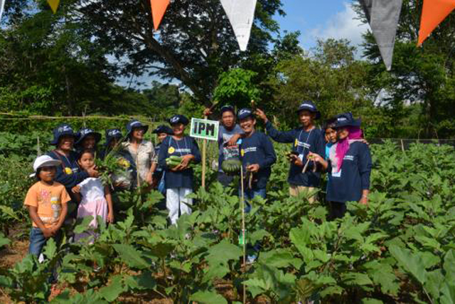 Restoring agricultural livelihoods in conflict-affected communities in North Cotabato, Philippines