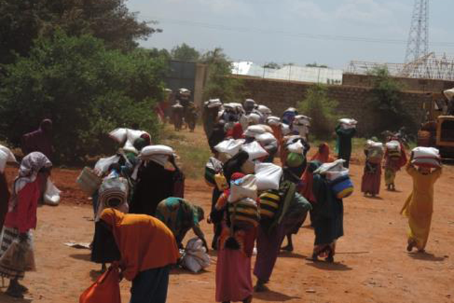 Building household and community resilience and response capacity to shocks and stresses in Somalia