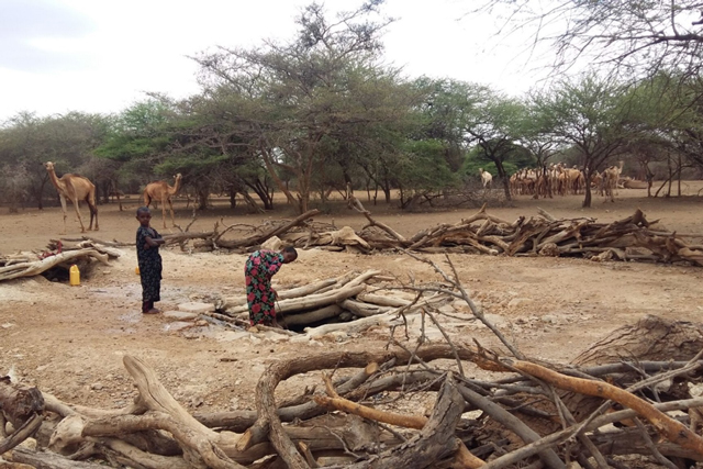 Somalia Water and Land Information Management (SWALIM): Improving flood risk management in Somalia