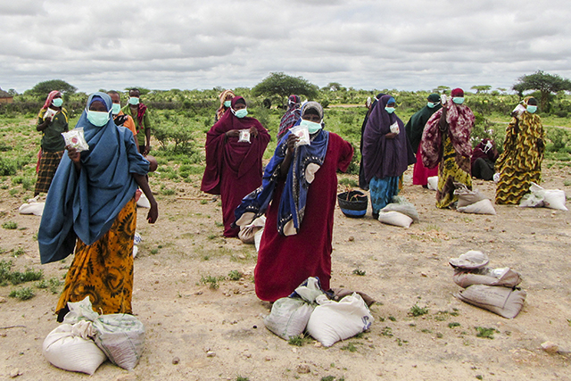 Urgent action required to prevent a major food crisis in Eastern Africa | IGAD-FAO-WFP Joint Statement