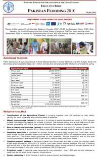 Pakistan Floods 2010 - Executive Brief 26 July 2011