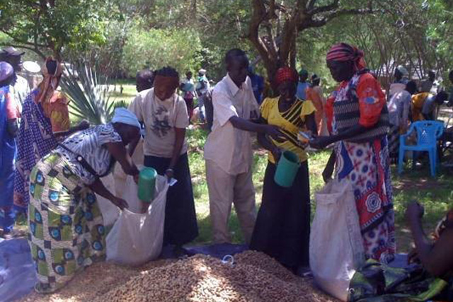 Mitigating the impact of drought on households' food security and nutrition