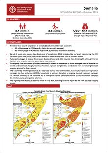 Somalia - Situation report October 2019