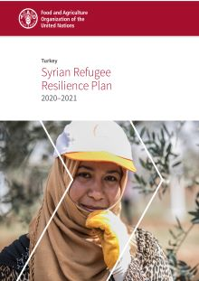 Turkey - Syrian Refugee Resilience Plan (2020–2021)