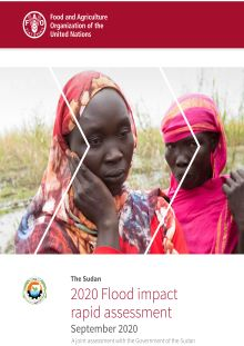 The Sudan | 2020 Flood impact rapid assessment