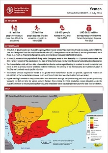 Yemen - Situation report 1 July 2016