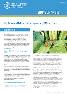 FAO Advisory note on Fall Armyworm in Africa