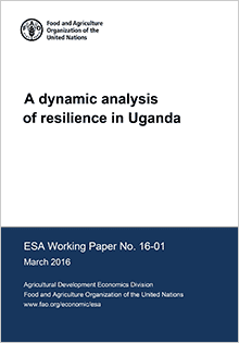 A dynamic analysis of resilience in Uganda