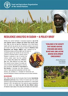 Resilience analysis in Sudan: a policy brief