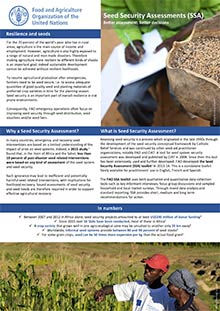 Seed Security Assessments (SSA)