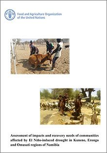 Assessment of impacts and recovery needs of communities affected by El Niño-induced drought in Kunene, Erongo and Omusati regions of Namibia