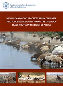 Water and fodder availability along livestock trade routes in the Horn of Africa