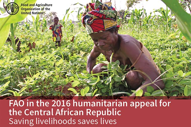 FAO in the 2016 humanitarian appeal for the Central African Republic
