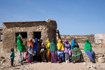 Drought in the Horn of Africa : FAO in Emergencies