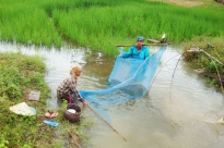 Lao People's Democratic Republic: Joint Appeal for Flood Recovery and Rehabilitation