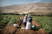 The West Bank and Gaza Strip - Humanitarian Response Plan 2018