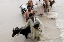 Pakistan Initial Floods Emergency Response Plan 2010