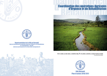FAO Burundi: Plan of Action 2010/2011