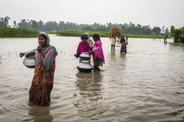 FAO and partners call for early warning and early action to avoid disasters