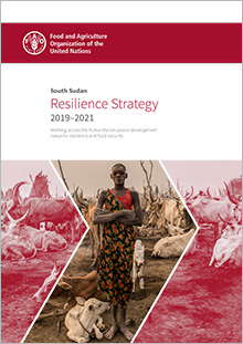 South Sudan Resilience Strategy 2019–2021