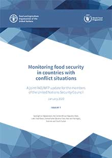 Monitoring food security in countries with conflict situations (Issue No.7 - January 2020)