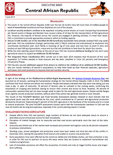 Central African Republic - Executive brief 9 June 2014