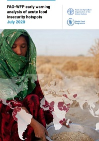 FAO-WFP early warning analysis of acute food insecurity hotspots (July 2020)