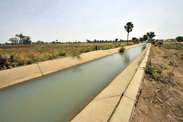 Sound water management key to building resilience in Africa's Sahel