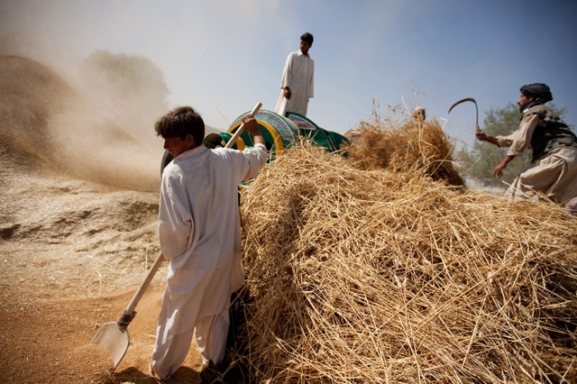 Afghanistan: A Profile of Poverty