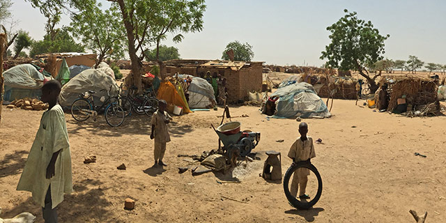 FAO and the crisis in the Lake Chad Basin : FAO in Emergencies